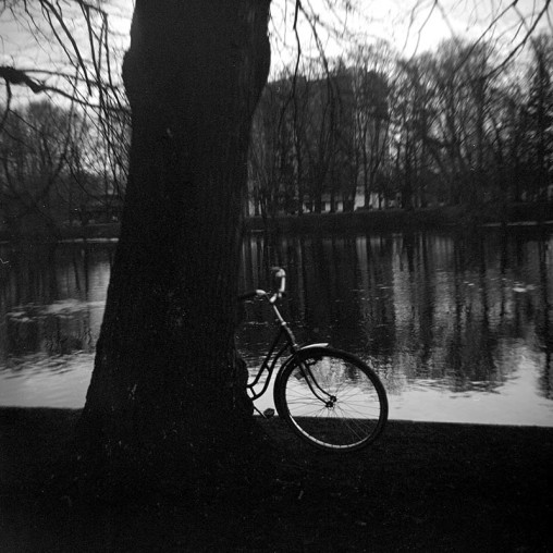 bicycle-tree-river