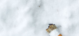 Cigarette Butt on Snow