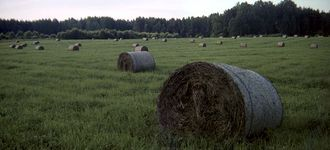 Hay Rolls in Color